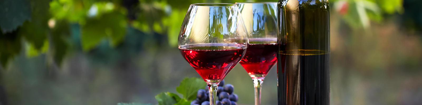 Wine Tasting (Photo: Rostislav_Sedlacek/Shutterstock)