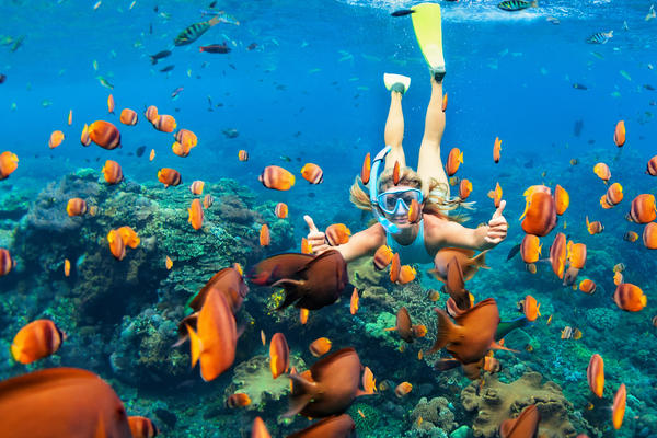 Snorkeling (Photo: Tropical studio/Shutterstock)