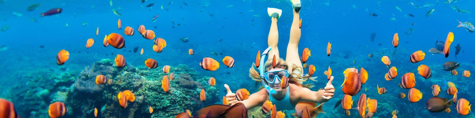 Snorkeling (Photo: Tropical studio/Shutterstock)