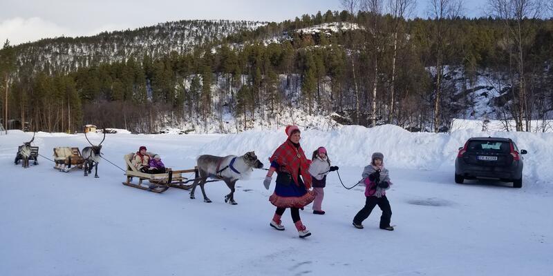 Reindeer Sledding Shore Excursion (Photo: Colleen McDaniel)