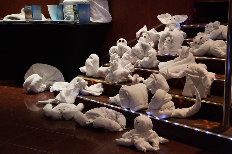 Towel Animal on Carnival Conquest