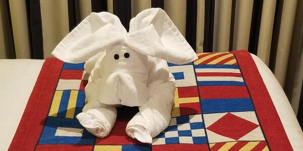 Towel dog greeting guests in Carnival Horizon's Family Harbor Cabin (Photo: Cgray2015/Cruise Critic Member)