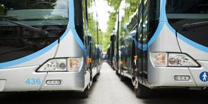 Shuttle Busses (Photo: Juanan Barros Moreno/Shutterstock)