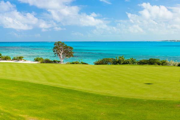 Coastal golf course in the Caribbean (Photo: BlueOrange Studio/Shutterstock.com)