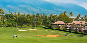 Golf course in Maui (Photo: Joe Benning/Shutterstock.com)