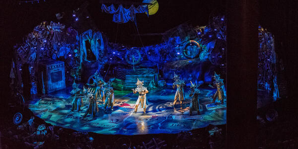 Cats Performance on Oasis of the Seas (Photo: Cruise Critic)