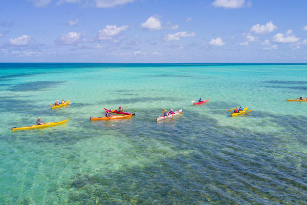 Aerial shot of group kayaking in brightly colored Caribbean waters