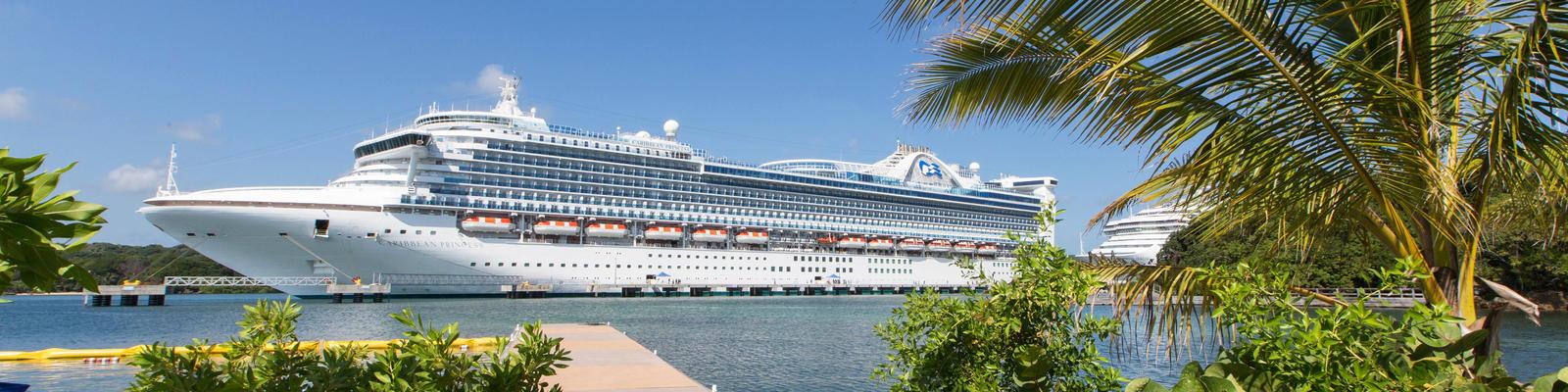 Caribbean Princess (Photo: Cruise Critic)