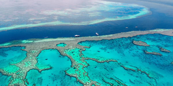 Pelorus Island offers easy acces to the Great Barrier Reef (Photo: superjoseph/Shutterstock)
