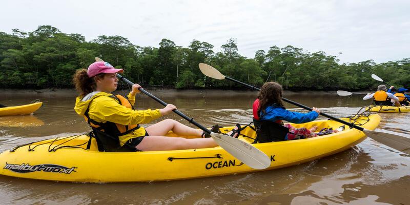 Mangrove Kayak Excursion in the Darien Jungle