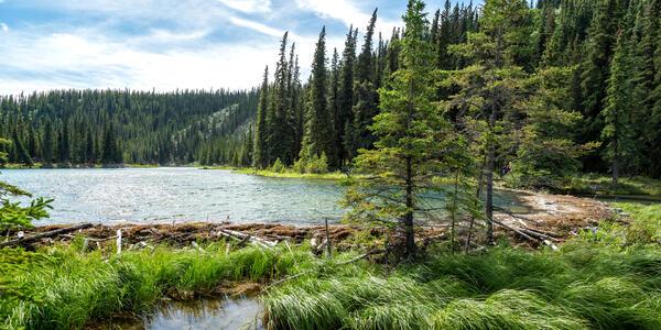 Denali National Park, Alaska (Photo: Jon Manjeot/Shutterstock)