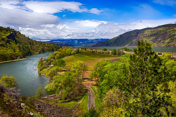 Columbia River, Oregon (Photo: Victoria Ditkovsky/Shutterstock)