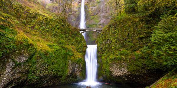 Multnomah Falls by Benson Bridge (Photo: Thye-Wee Gn/Shutterstock)