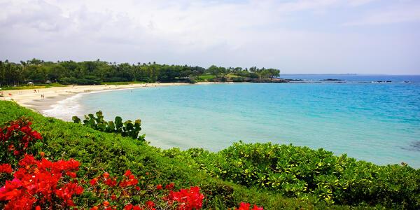 Hapuna Beach State Park, Big Island, Hawaii (Photo: Anna Abramskaya/Shutterstock)