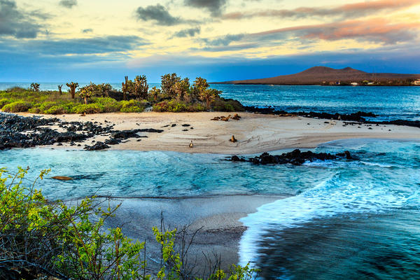 Galapagos Islands (Photo: Rene Holtslag/Shutterstock)