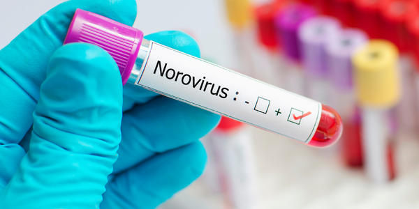 Demystifying the Myths of Norovirus (Photo: Jarun Ontakrai/Shutterstock)