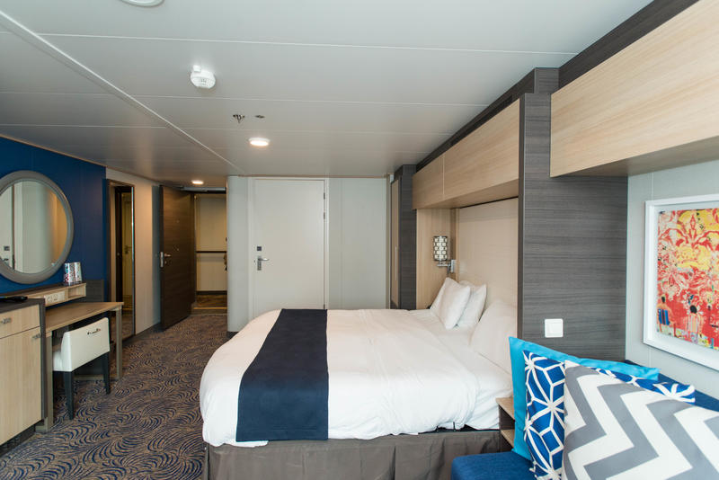 The Accessible Ocean-View Cabin on Anthem of the Seas