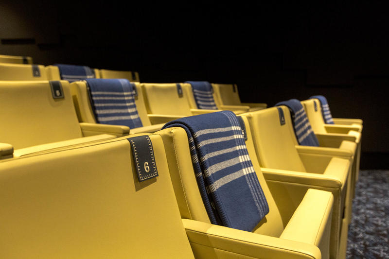 Cinemas on Viking Orion