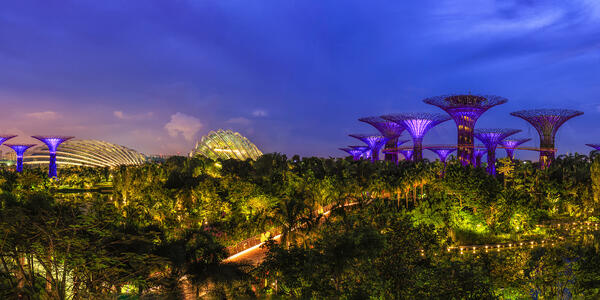 Photograph: Panorama view. Supertree Groves in Gardens by the Bay at twilight time, Singapore - Photography by SURAKIT SAWANGCHIT via Shutterstock