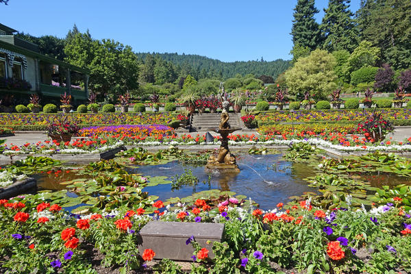 Photograph of the Butchart Gardens in Victoria, British Columbia, Canada  - Photography by Muriel Lasure via Shutterstock)
