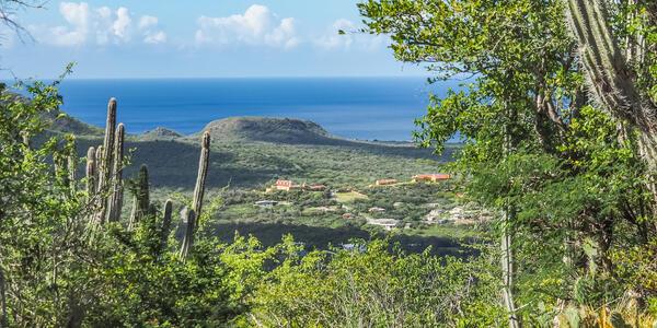 Christoffel National Park, Caribbean (Photo: Gail Johnson/Shutterstock)