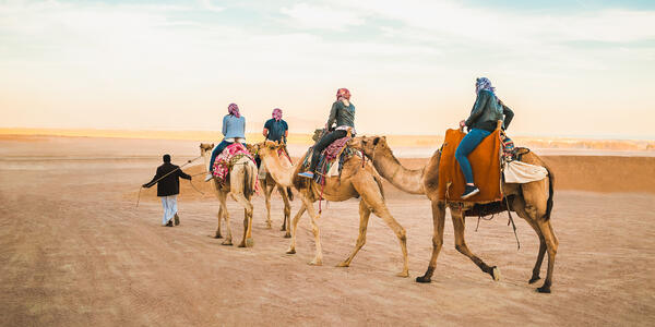 Group Camel Riding (Photo: travin_photo/Shutterstock)