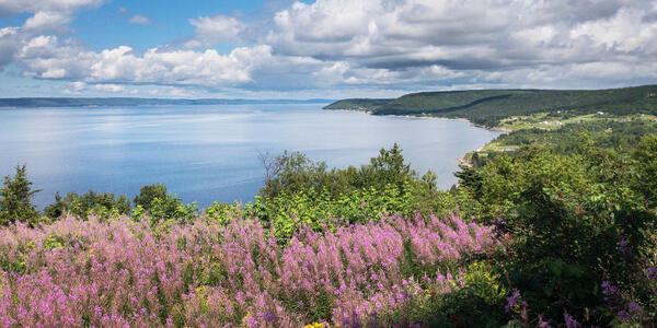 Bras d'Or Lake (Photo: Digitalsucks/Shutterstock)