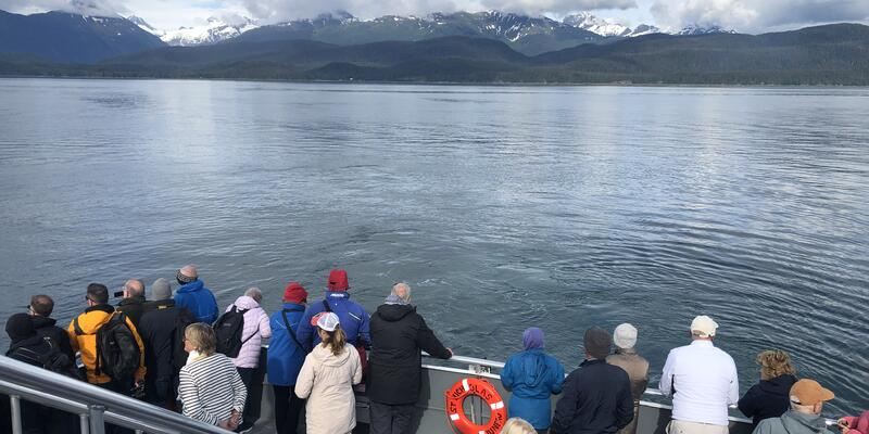 Passengers Looking for Whales Onboard Ferry (Photo: Christina Janansky/Cruise Critic)