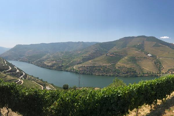 Panoramic view of the Douro River (Photo: Adam Coulter)
