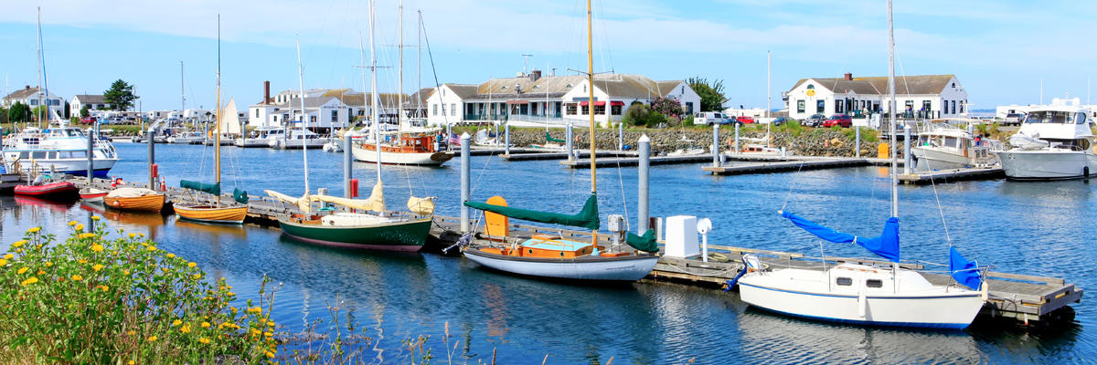 Port Townsend, Washington's Downtown Marina with Boats and Residential Buildings (Photo: Artazum/Shutterstock)
