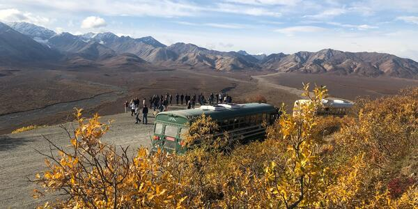 The Bus and Passengers Enjoying Scenic Views on the Denali Tundra Tour (Photo: Chris Gray Faust/Cruise Critic)
