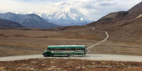 Bus Driving Away from the Denali Tundra Wilderness (Photo: Chris Gray Faust/Cruise Critic)