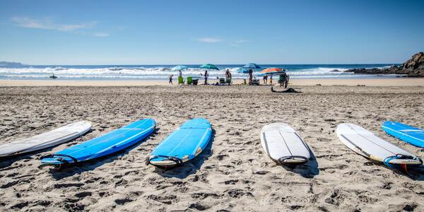 Surf Boards at Los Cerritos Beach in Baja California, Mexico (Photo: Globe Guide Media Inc/Shutterstock)