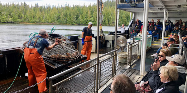 Employee bringing in crabs caught in for a demonstration (Photo: Chris Gray Faust/Cruise Critic)
