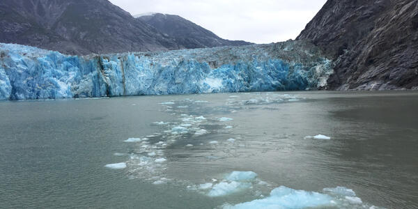 A trail of ice chunks leading to Dawes Glacier shortly after calving. The glacier is located in Alaska's Endicott Arm (Photo: Ashley Kosciolek/Cruise Critic)