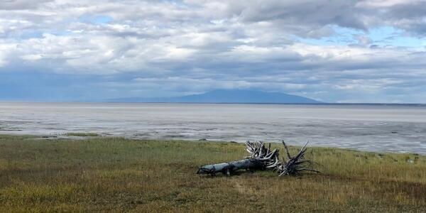 Scenic view in Anchorage, Alaska (Photo:Chris Gray Faust/Cruise Critic)