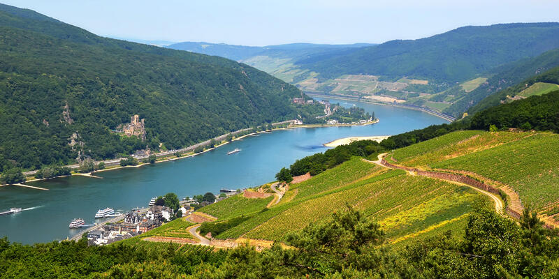 Rhine River (via Shutterstock)