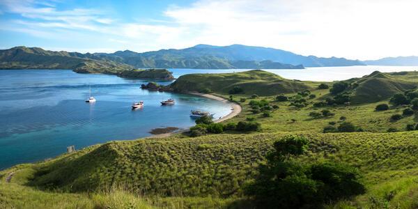 Komodo Island (Photo: Tanutkij/Shutterstock)