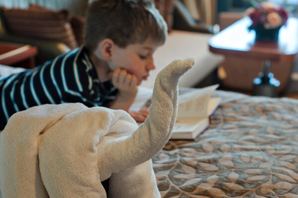 Little boy reading a book on stateroom bed, next to a towel animal