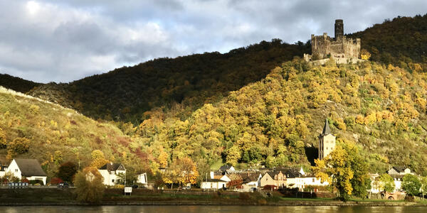 View from Vantage Deluxe World Travel's River Splendor of the autumn scenery along the Rhine River (Photo: Kerry Spencer/Cruise Critic)