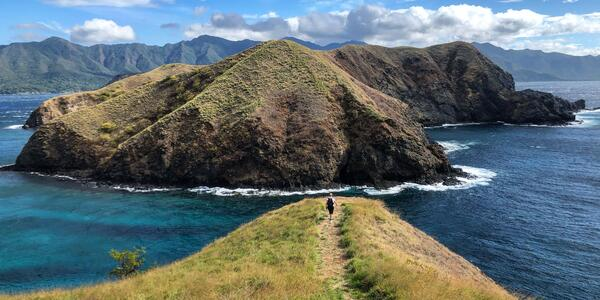 Wide-angle landscape photo of a person walking out to the grassy cliffside of Bat Islands