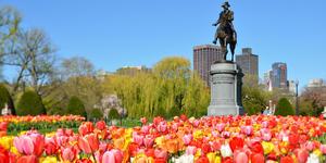 Boston Common & Public Garden (Photo: Jorge Salcedo/Shutterstock)