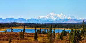 Denali National Park (Photo: Michal Sarauer/Shutterstock)