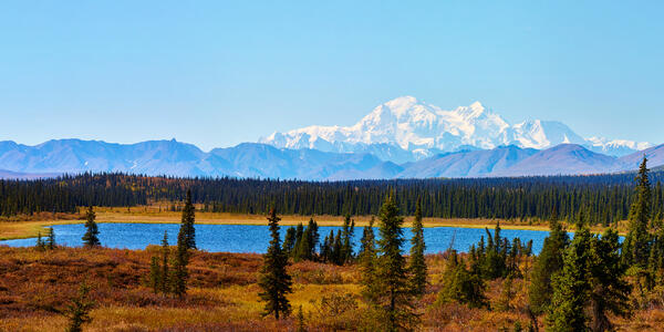 Denali National Park (Photo: Michal Sarauer/Shutterstock)