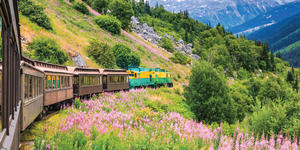Train Heads Towards Alaskan Town (Photo: Holland America)