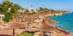 Red Sea in Sharm el Sheikh, Sinai, Egypt (Photo: Oleg_P/Shutterstock)