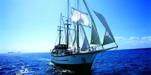 Island Windjammers' Sagitta (Photo: Island Windjammers)