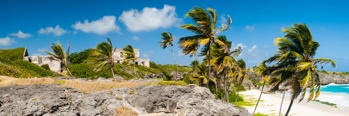 Barbados (Photo:Filip Fuxa/Shutterstock)