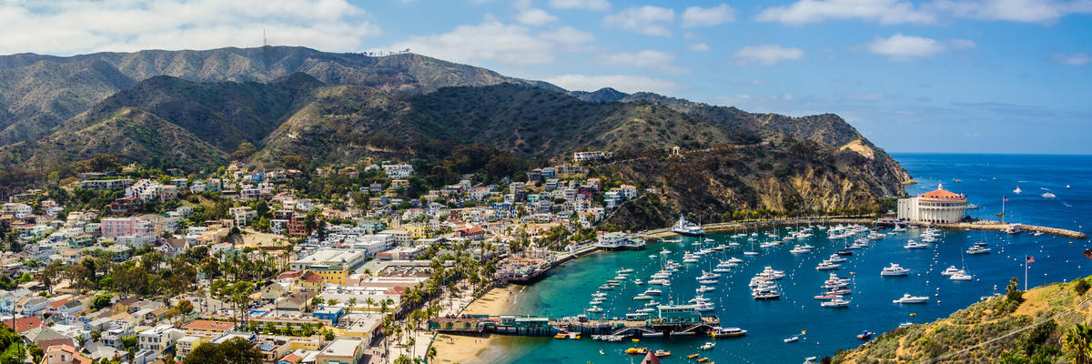 Catalina Island Cruise Port Terminal Information For Port Of