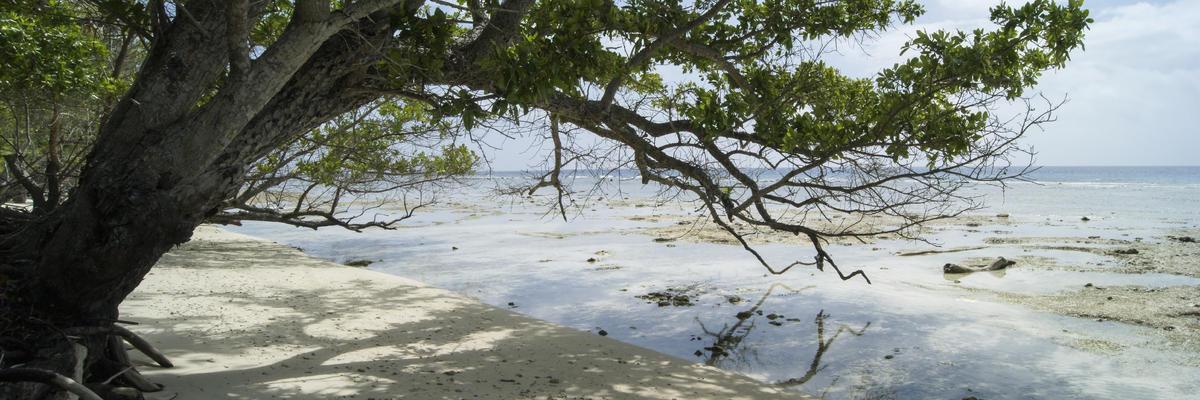 Conflict Islands (Photo:A van Graan/Shutterstock)